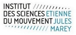 Logo_ISM